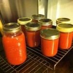 Late summer tomato sauce from end of the season harvest, Twin Gables Bed and Breakfast Inn, Skamokawa, WA