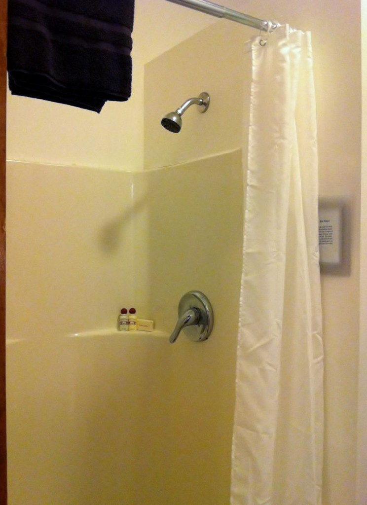Vacation Rental Shower at Twin Gables, Skamokawa, WA
